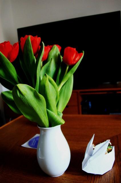 Tulpen und Hase