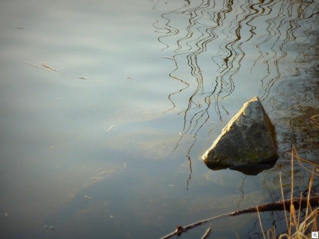 Stein im Main