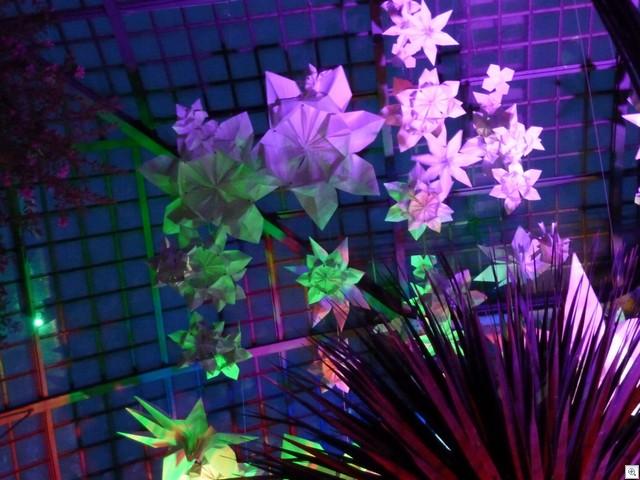 Blüten I