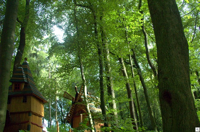 Märchenwald I